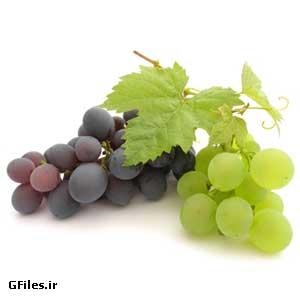 دانلود تصویر با کیفیت انگور سبز و سیاه