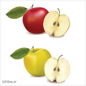 فایل لایه باز و وکتوری میوه سیب (سیب قرمز و زرد) با فرمت AI