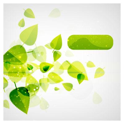 دانلود وکتور لیبل (فایل برداری) برگ های سبز