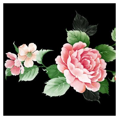 فایل لایه باز گل رز