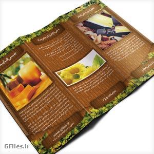 دانلود فایل psd لایه باز قالب بروشور با تم رنگی قهوه ای مناسب برای بروشور محیط زیست ، طبیعت و ...