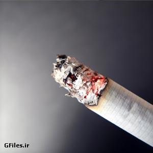 تصویر با کیفیت از سیگار روشن از نمای نزدیک ، ارائه شده با فرمت jpg