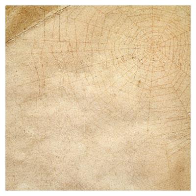 عکس با کیفیت کاغذ پوستی و قدیمی قهوه ای با فرمت jpg