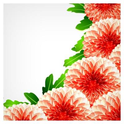 وکتور گلهای داوودی