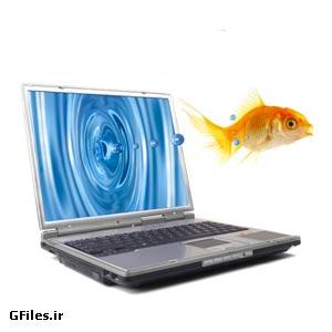 دانلود عکس با کیفیت خلاقانه خروج و پرش ماهی از لپ تاپ