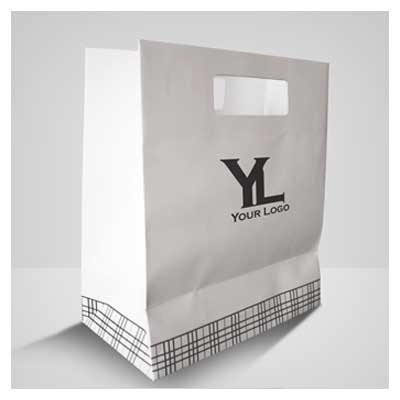 Bag Paper Mock up