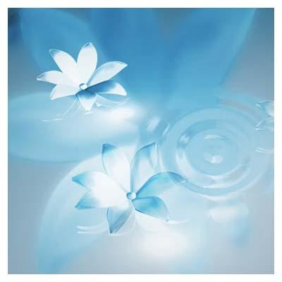 ویدیوی با کیفیت چرخش گلهای سه بعدی روی آب