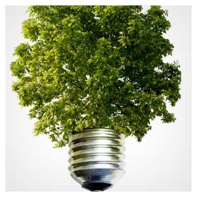 عکس با کیفیت لامپ سبز