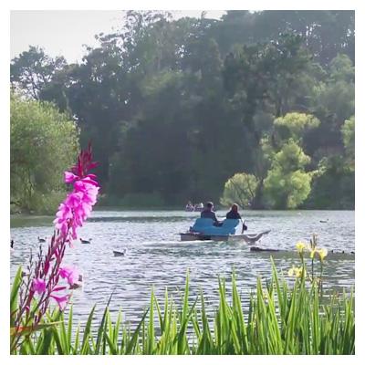 دانلود رایگان ویدیوی قایق سواری در پارک
