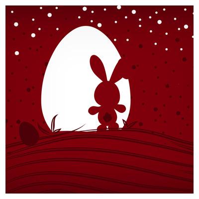 دانلود وکتور خرگوش