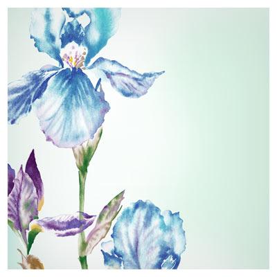 دانلود پس زمینه گلدار گل زنبق بصورت لایه باز