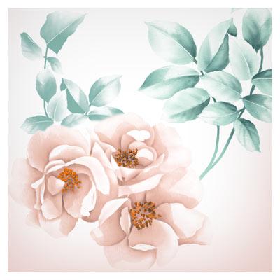 دانلود پس زمینه PSD گلهای زیبای رز بصورت لایه باز