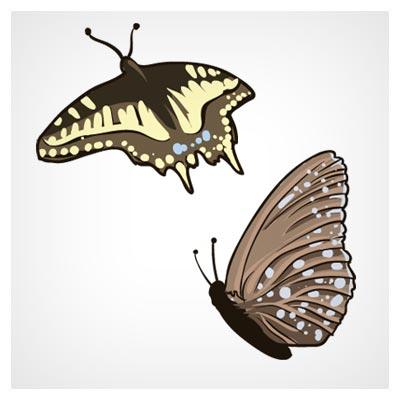 وکتور رایگان لایه باز پروانه های زیبا