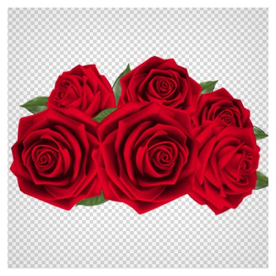 مجموعه دسته گل رزهای فرمز دوربری شده (بدون پس زمینه png)