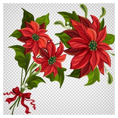 png دسته گل قرمز رنگ بدون پس زمینه و با کیفیت بالا