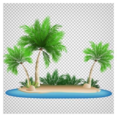 فایل png و بدون زمینه ساحل و درخت های نخل