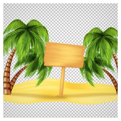 png دوربری شده ساحل و درخت های نارگیل کارتونی
