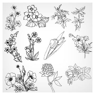 مجموعه Shape های متنوع گل (csh)