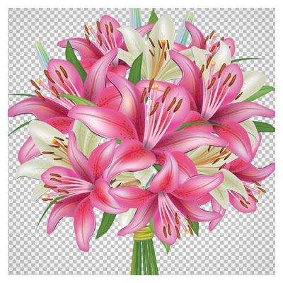 فایل دوربری شده دسته گل های لیلیوم صورتی