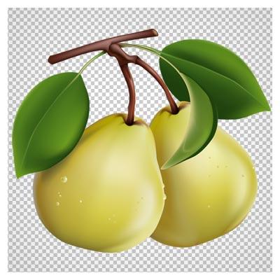 فایل دوربری شده میوه گلابی (png)