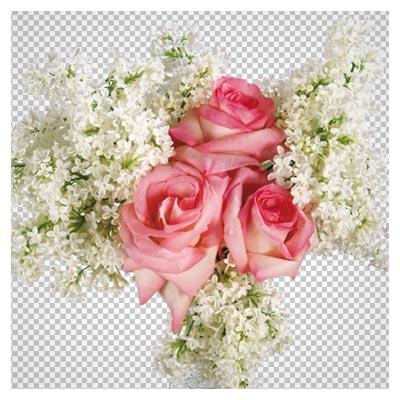 گلدان گل رز و گلهای یاس سفید (بدون پس زمینه)