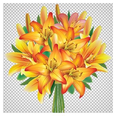 دسته گل زیبای گلهای لیلیوم نارنجی (PNG بدون پس زمینه)