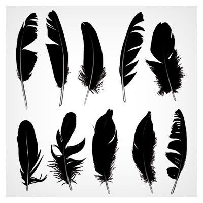 وکتور پرهای مختلف (Feather) با فرمت برداری