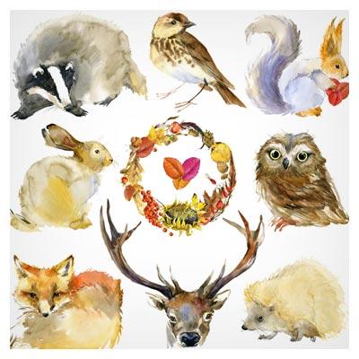 تصویر با کیفیت حیوانات و پرندگان نقاشی شده