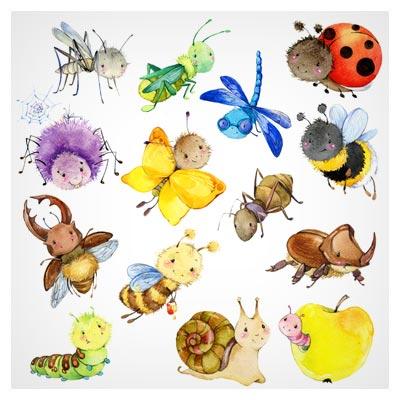 تصویر با کیفیت و کارتونی نقاشی شده حشرات مختلف