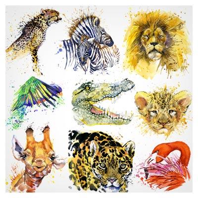 دانلود رایگان تصاویر با کیفیت حیوانات نقاشی شده با آبرنگ