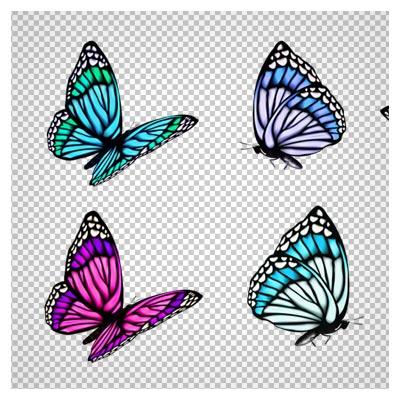 کلکسیون پروانه های زیبا با فرمت png (بدون زمینه)