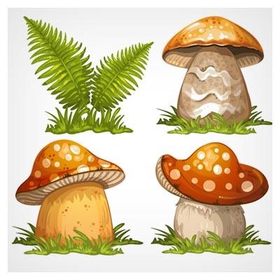 مجموعه وکتور کارتونی انواع قارچ ، کاملا لایه باز