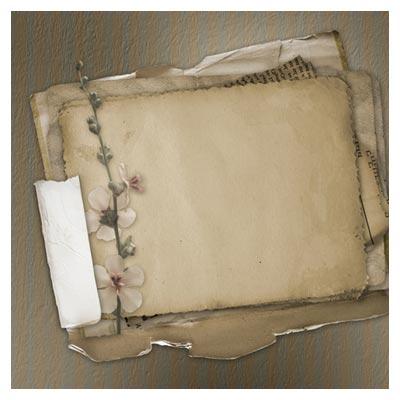 عکس با کیفیت کاغذهای قدیمی و شاخه گل