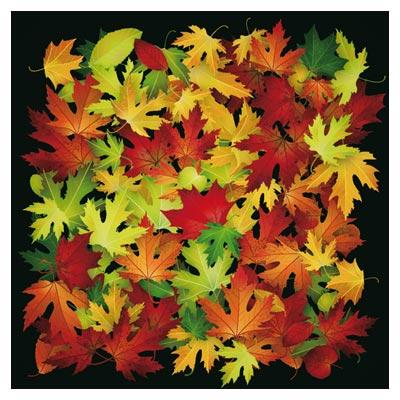 وکتور رایگان مجموعه برگهای پاییزی بصورت لایه باز (Autumn Leaves Beautiful Background Art)