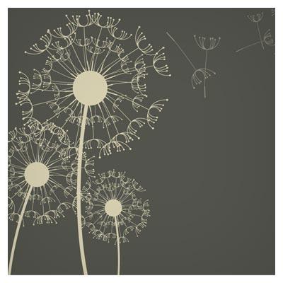 پس زمینه وکتوری گل های قاصدک