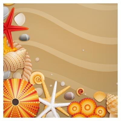 بنر وکتور ستاره دریایی ، صدف و ... بصورت لایه باز (Seashells Starfish)