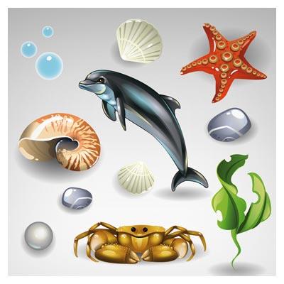 وکتور مجموعه المان های سه بعدی دریایی شامل دلفین ، ستاره دریایی (Shining Seashells Design vector set)
