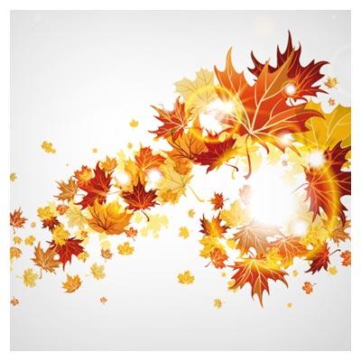 وکتور برگ های پاییزی لایه باز (Maple Leaf background vector)