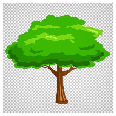 دانلود فایل رایگان ترانسپرنت درخت سبز (Green Tree png Image)