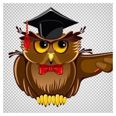 فایل رایگان PNG جغد معلم در حال تدریس (Owl Teacher PNG Clipart)