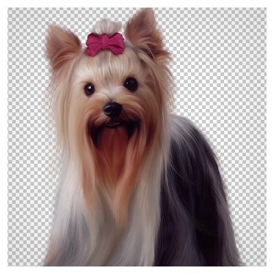 فایل دوربری شده سگ اسکاتلندی (png با کیفیت بالا)(Painted Scotch Collie Dog PNG Picture Clipart)
