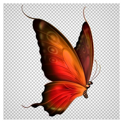 فایل دوربری شده کارتونی پروانه قهوه ای قرمز (Red and Brown Transparent Butterfly Clipart)
