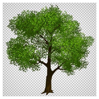 کلیپ آرت کارتونی درخت سبز png با کیفیت بالا (Transparent Green Tree Clipart Picture)