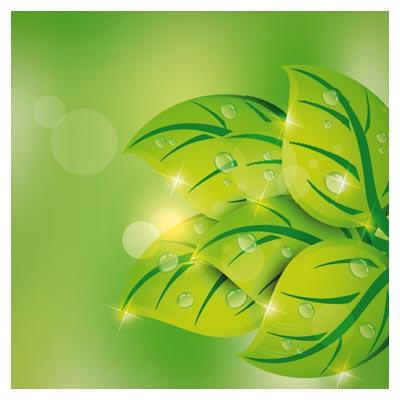 پس زمینه لایه باز برگ های زیبای سبز (Green Abstract Background Free Vector Art)