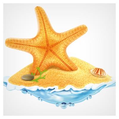 دانلود رایگان پس زمینه وکتور ساحل و ستاره دریایی (Sea Island Summer Holiday Elements vector background)