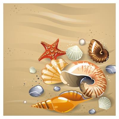 وکتور لایه باز بنر و پس زمینه ساحلی با صدف و ستاره دریایی (Shining Seashells Design vector set)