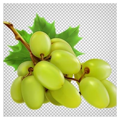 فایل دوربری شده (png) انگور سبز با کیفیت بسیار بالا