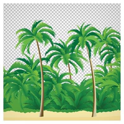 فایل کارتونی جزیره و درخت های نارگیل (دوربری شده بدون زمینه)