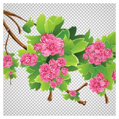 تصویر کارتونی شاخه درخت و شکوفه های بهاری با پسوند png