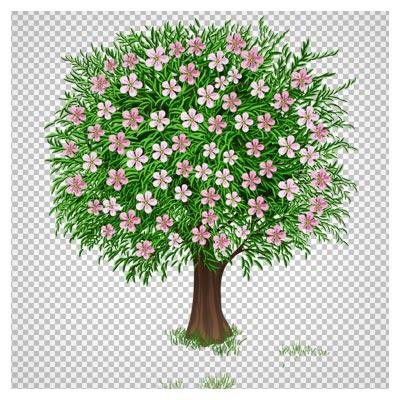 تصویر کارتونی دوربری شده درخت با شکوفه های بهاری (png ترانسپرنت)